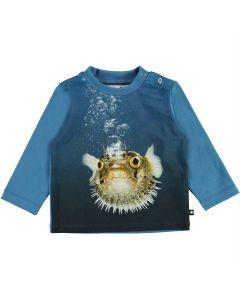 Shirt Molo  Enovan 7514
