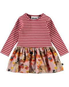 Kleid Molo  Carel 6373
