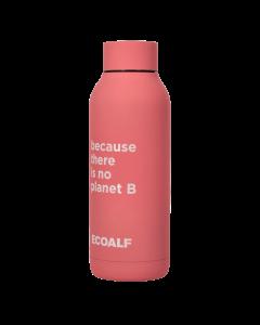 Trinkflasche ACBOBTPB0000US21 256