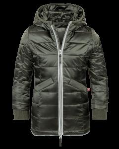 Mantel Lupaco  Snowy forestnight