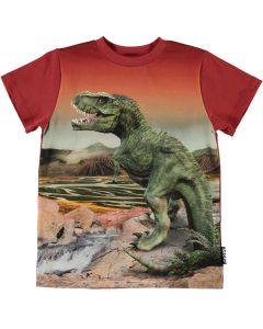 Shirt Molo  ROAD 7434